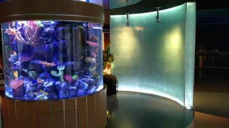 Ομοιογενές Κυλινδρικό Ενυδρείο Θαλασσινού Νερού