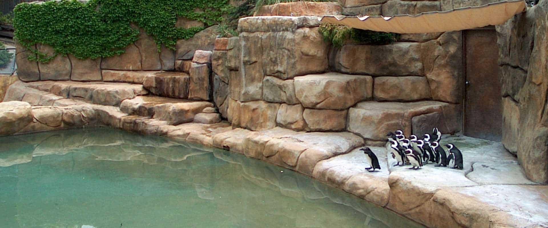 Ζωολογικοί κήποι & Υδάτινα πάρκα