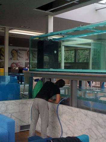 Residential Aquarium Maintenance