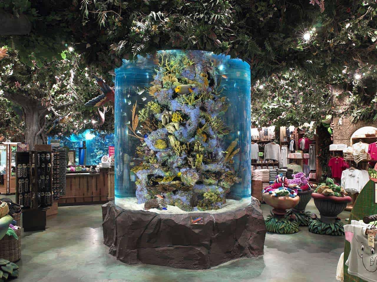 Rainforest Cafe Aquariums Public Aquaria Aqualife